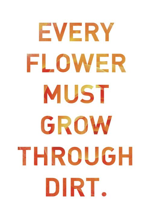 every flower must grow through dirt